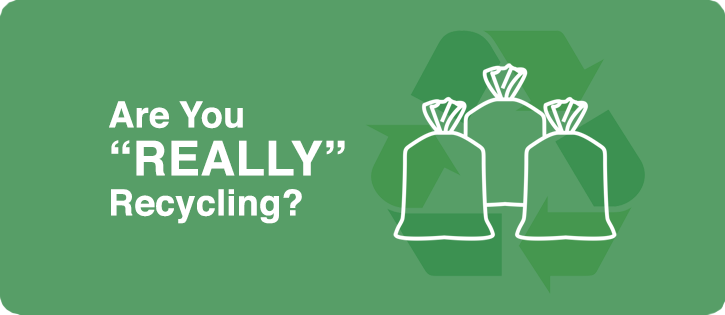 are you really recycling